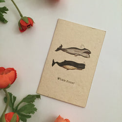 WHALE DONE CARD