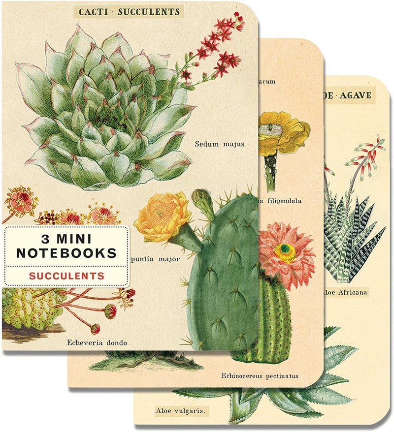SUCCULENTS MINI NOTEBOOK 3-PACK