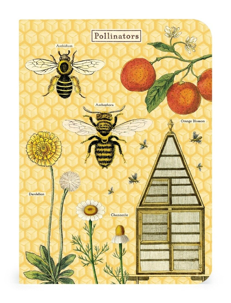 BEES & HONEY MINI NOTEBOOK 3-PACK