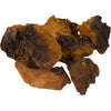 Alaska Chaga Chunks White Background