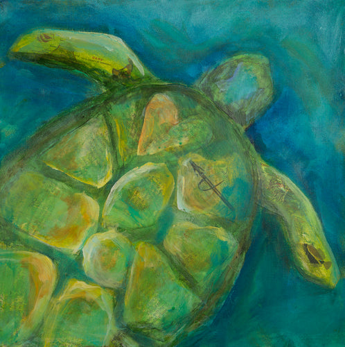 Sea Turtle - *Original*