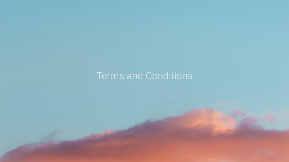 Terms of Conditions of our website and online store's usage