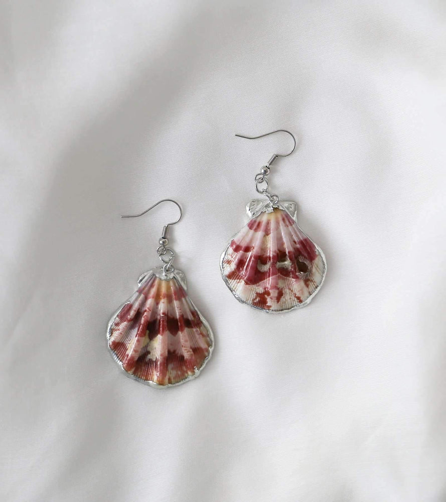 Calico Shell Earrings