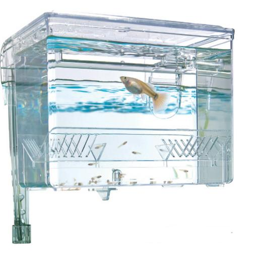 Fish Hatcheries / Net Breeders / Isolation Boxes / Fish Nets