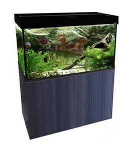 Aqua One Brilliance 80 Aquarium - Black 176 litres