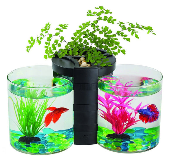 Blue Planet Betta Planter Twin Black 1.9L Bowls Fish Tank With Plant Aquarium