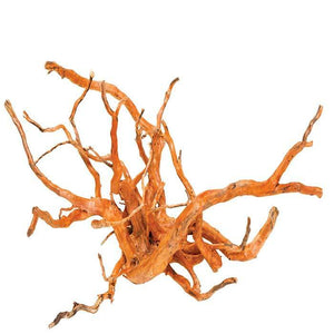 Natural Malaysian Gold Vine Driftwood - Medium  ( Approx size  35 - 50cm )