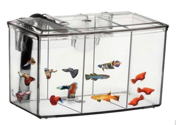 External Hang on Breeding Box / Fish Hatchery 2.5L
