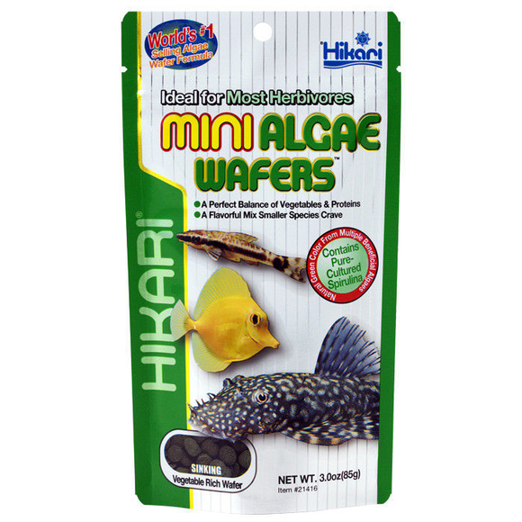 Hikari Mini Algae Wafers 85g Tropical Catfish & Plecos Sinking Wafer Disc Food