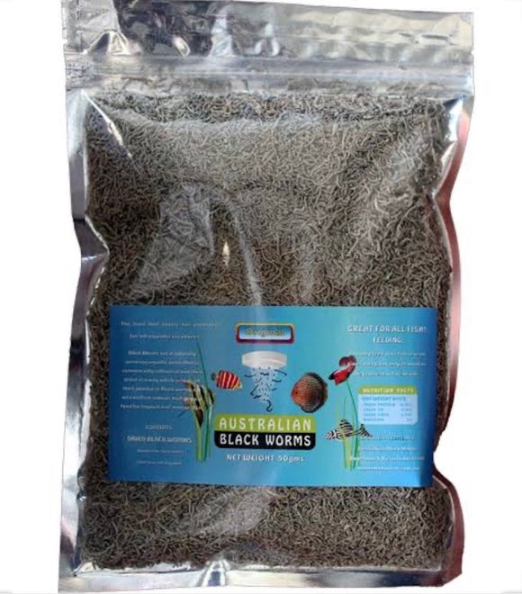 Australian Freeze Dried Black Worms 50gm - Loose