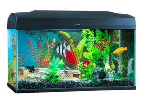 Blue Planet Classic Fish tank Aquarium 50L LED - Filter & Heater included