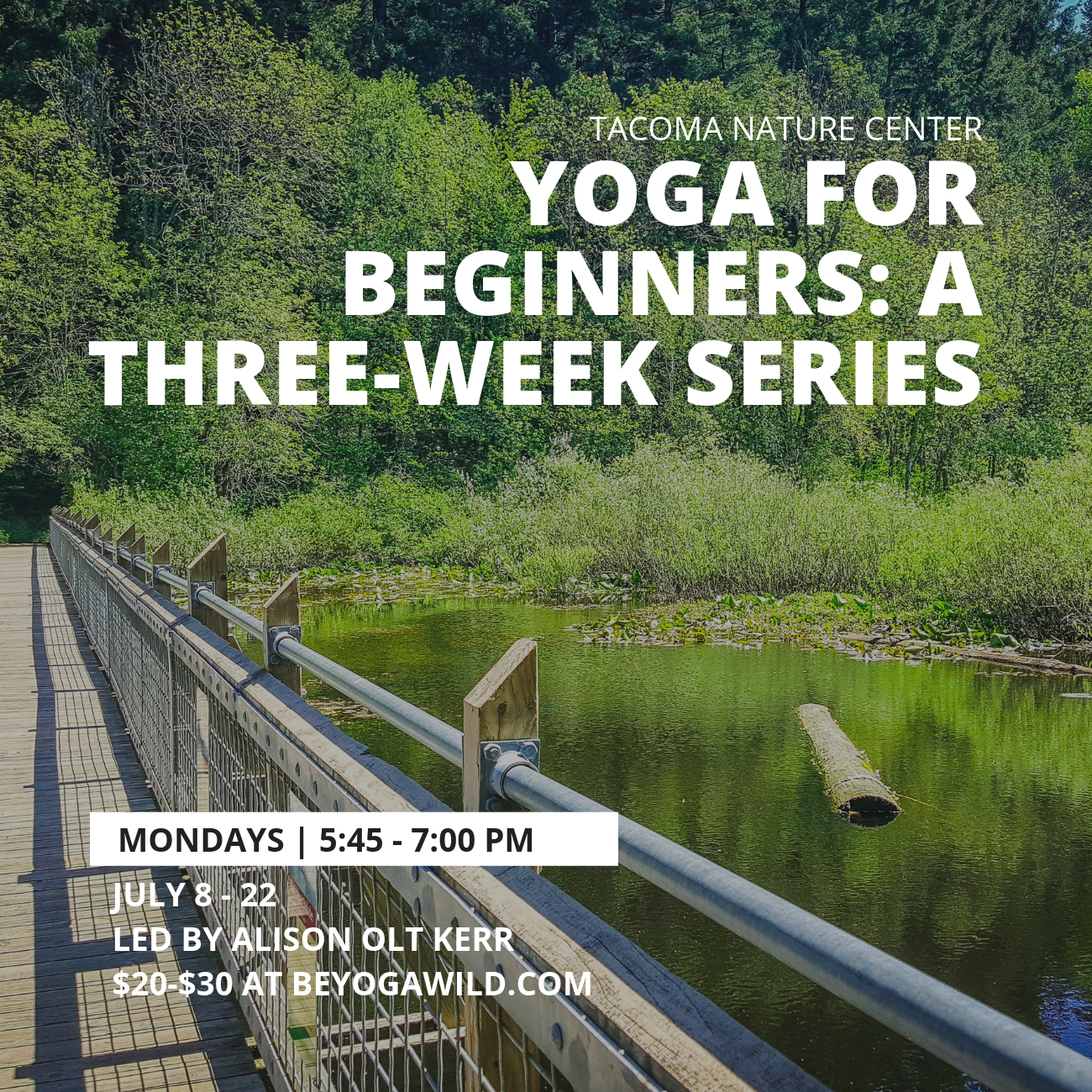 Yoga for Beginners: A Three-Week Series