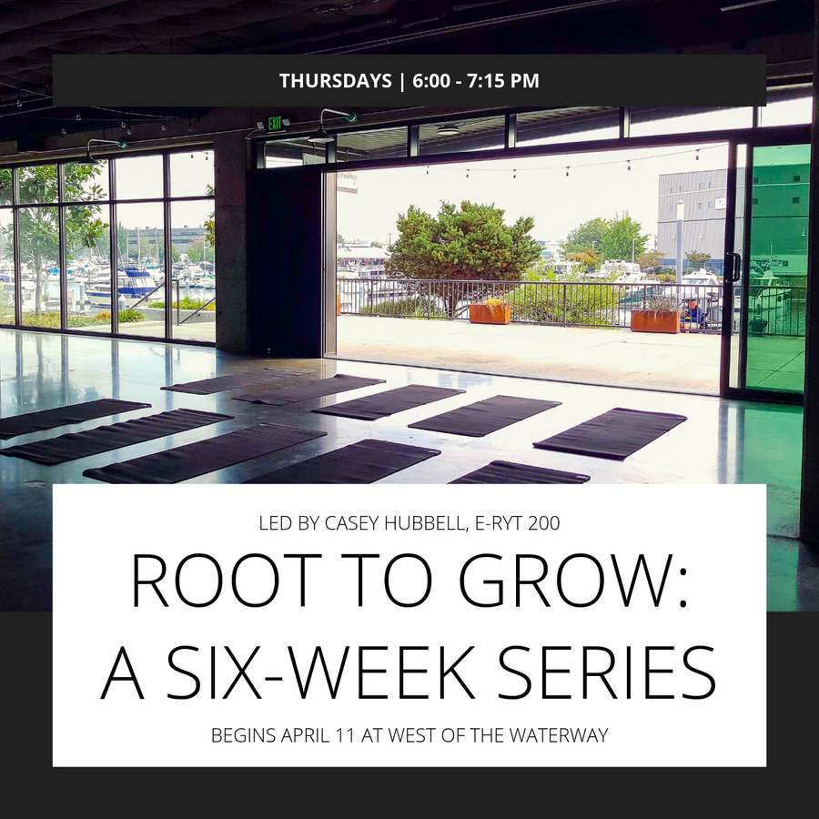 Z Root to Grow: A Six-Week Series