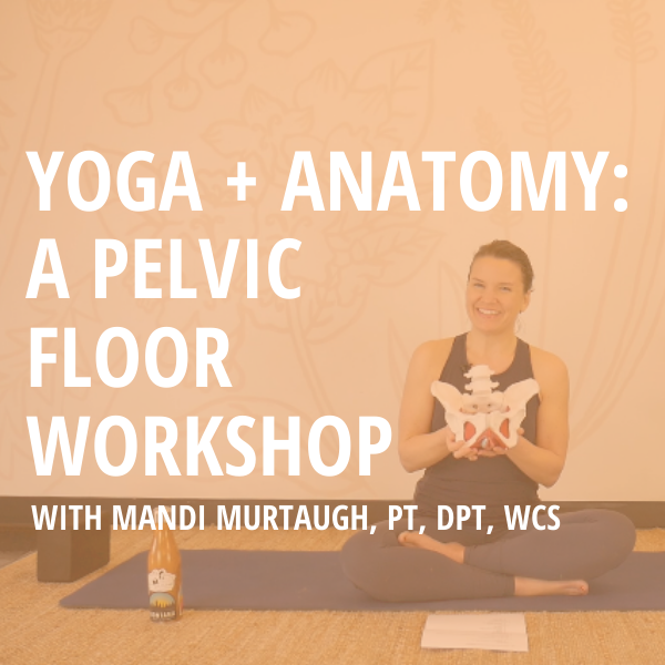 Yoga + Anatomy: A Pelvic Floor Workshop | Digital Download