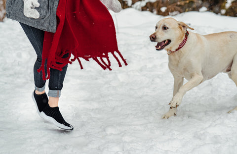 A woman wearing Vessi waterproof slip-on shoes playing with her dog in the snow.