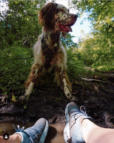 Muddy shoes and happy dog