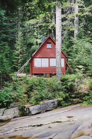 A rustic micro cabin displaying the perfect oasis for a 2021 vacation