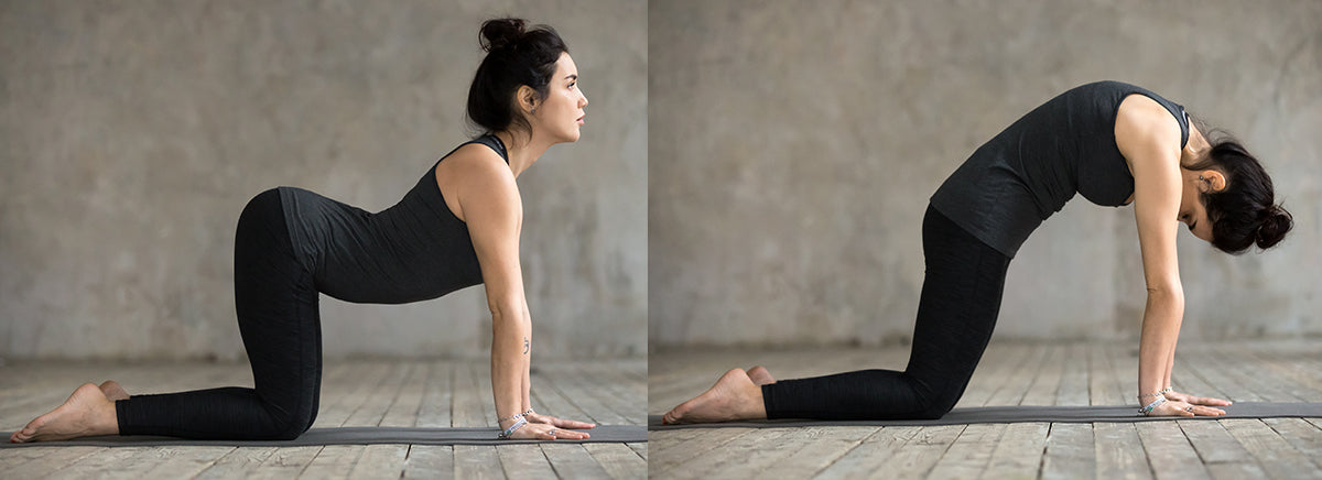 woman doing cat pose and cow pose on yoga mat