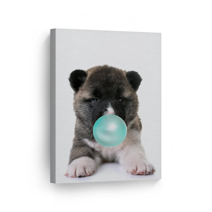 Akita Dog Bubble Gum Canvas Print Metal Print
