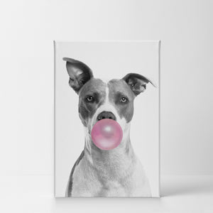 Pitbull Clip Art Bubble Gum Canvas Print Metal Print