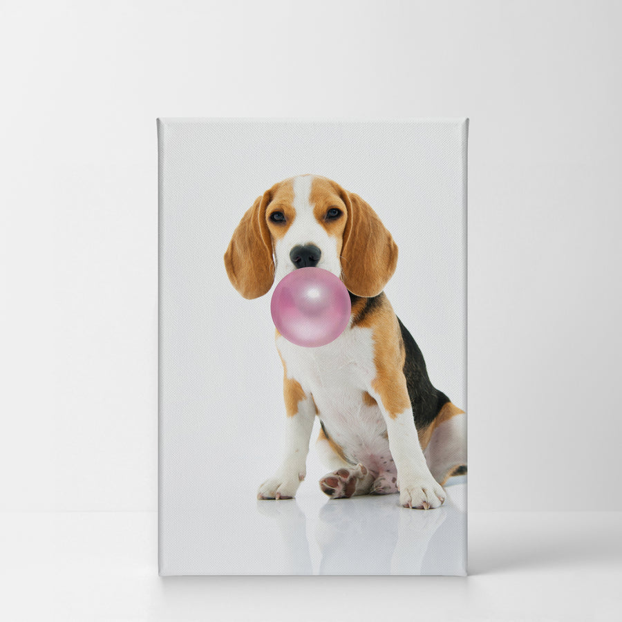 Beagle Bubble Gum Canvas Print Metal Print
