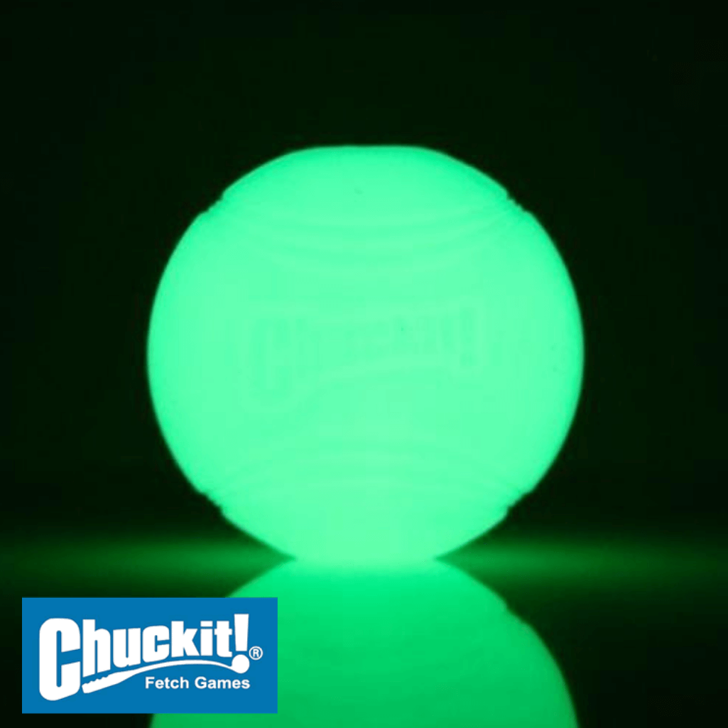 Chuckit! Max Glow Ball Glowing - Glow in the Dark Dog Ball