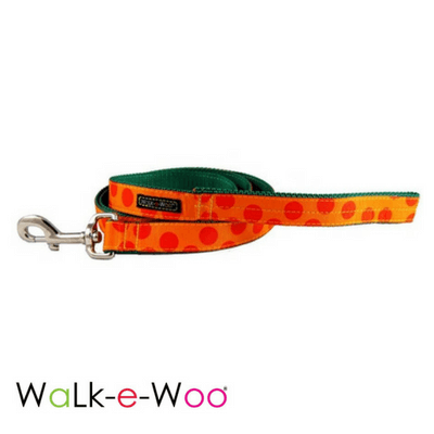 Walk-e-Woo Dog Collar Orange Dots on Orange