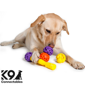 k9 Connectables Australia - The Tech Bone All Connected used by Labrador