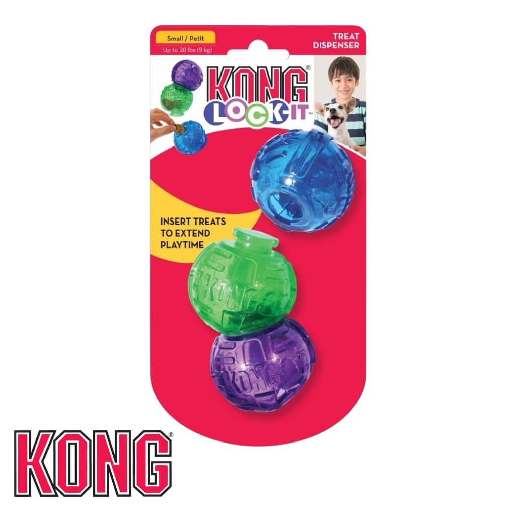 KONG Lock-It Medium Treat Dispensing Dog Toy