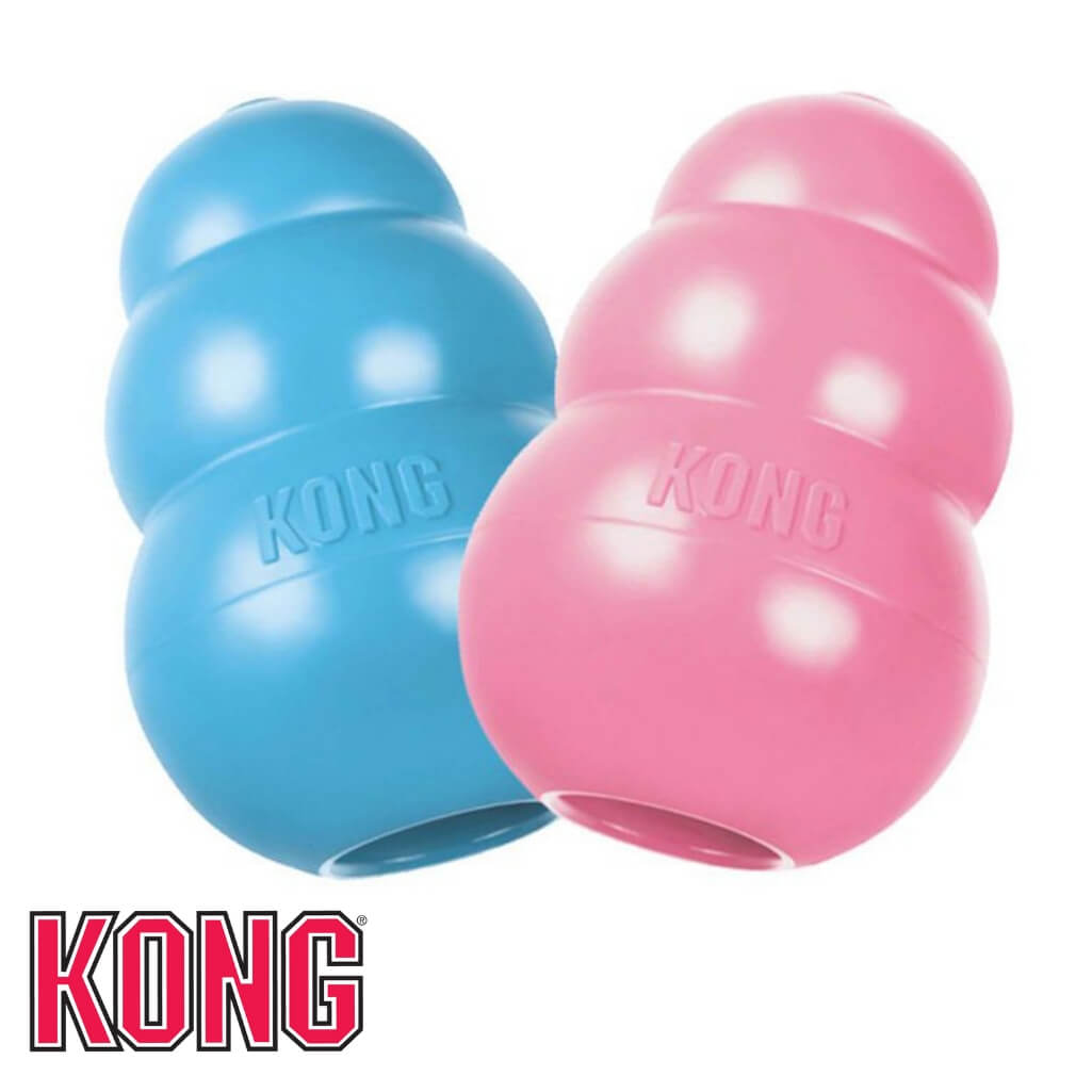 Kong Puppy Chew Toys for Puppies