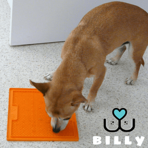 LickiMat Soother Orange Lickimat Australia Customer Billy