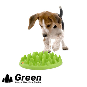 Northmate Green Mini slow feeder dog bowls australia