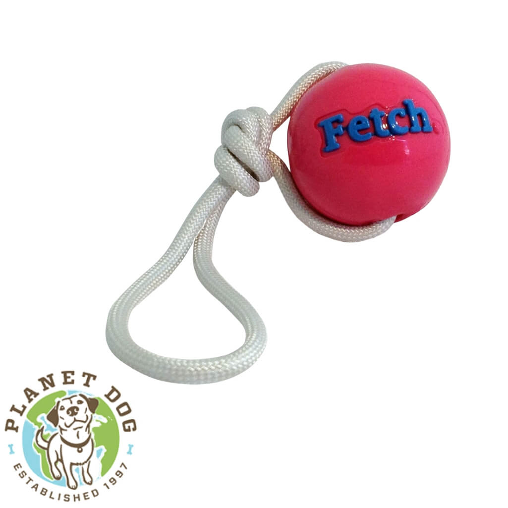 Planet Dog Orbee-Tuff Fetch Ball with Rope Pink | Planet Dog Australia