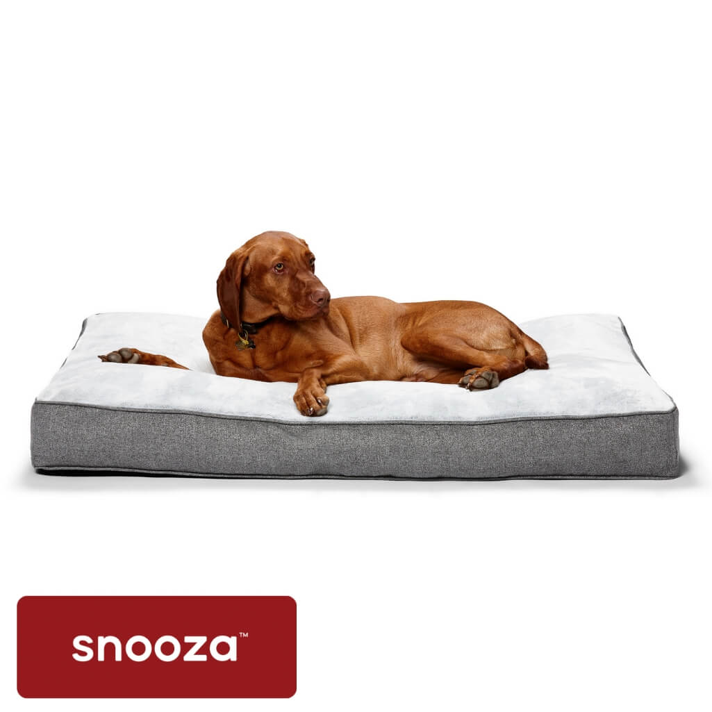 Snooza Shapes Oblong Oslo - Snooza Dog Beds