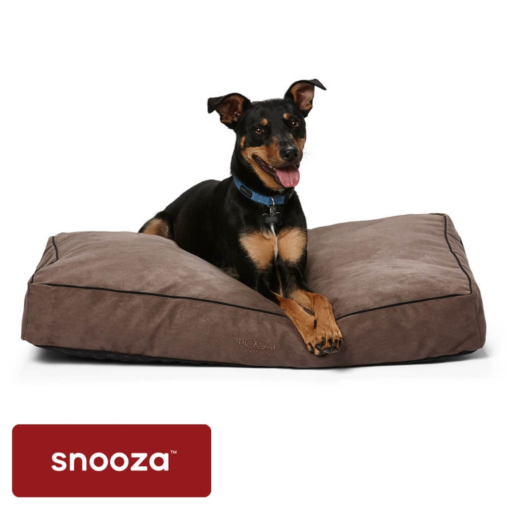 Snooza Shapes Oblong Mocha - Snooza Dog Beds