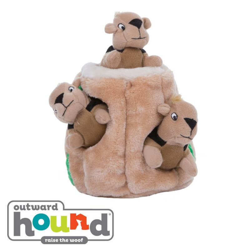 Outward Hound Plush Hide A Squirrel Interactive Dog Toy Junior