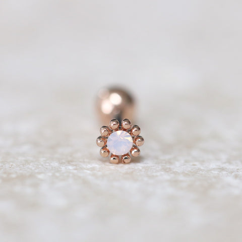 Tiny Flower Tragus Piercing Earring Rose Gold