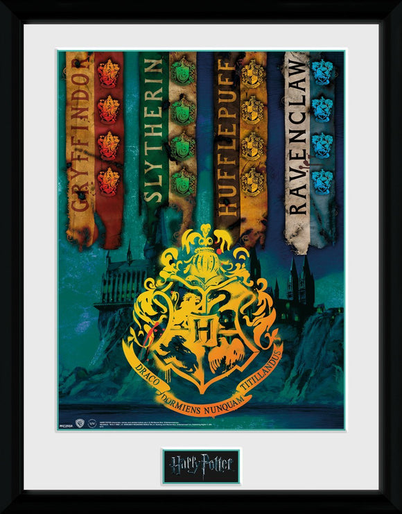 Harry Potter - House Flags (Stampa In Cornice 30x40cm), Wigashop, Wigashop