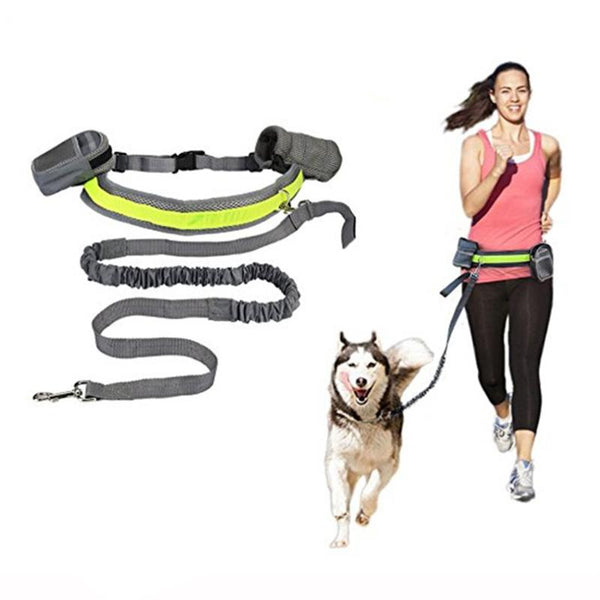 Elastic Waist Dog Leash