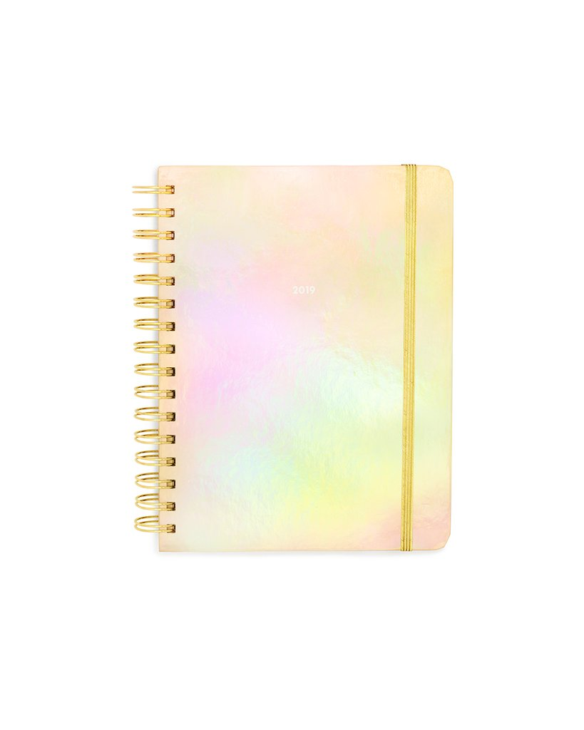 Planner 12-Month Medium [2019 ANNUAL] - Gold Holographic