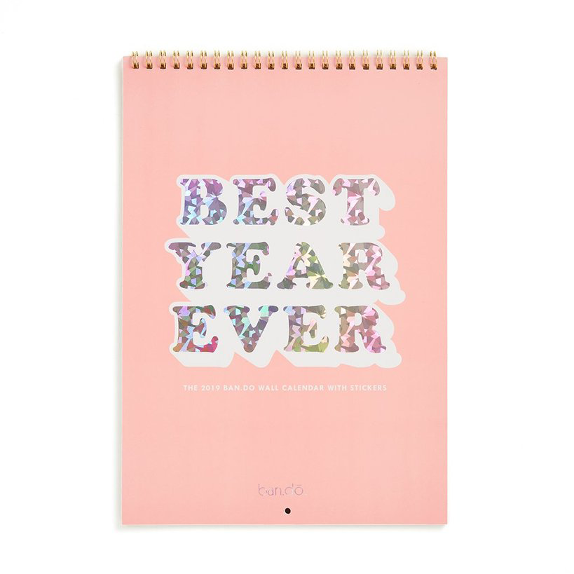 2019 Best Year Ever Wall Calendar