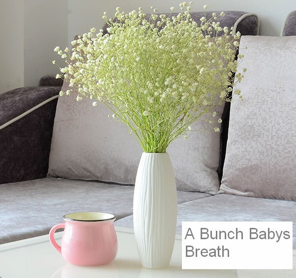 A bunch white babys breath
