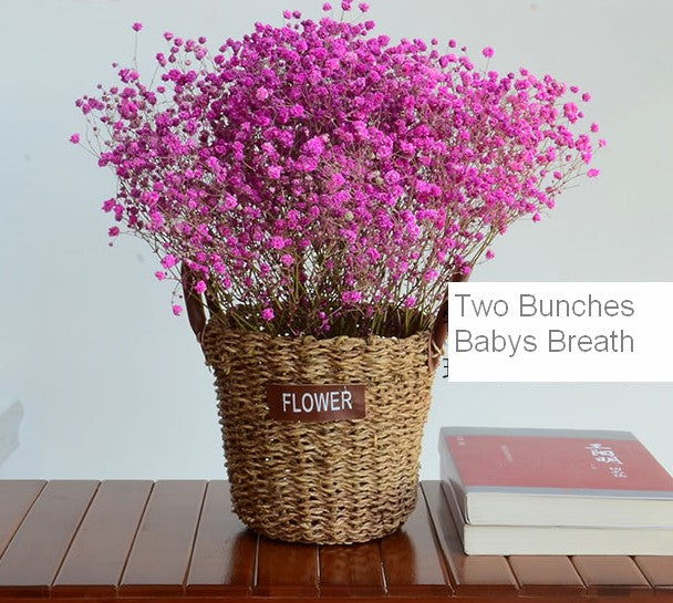 A bunch roseo babys breath