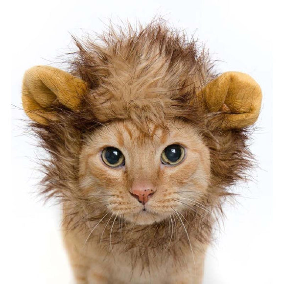 Pet Pride~Cat Hat! Turn Your Cat Into A Lion With This Awesome Hat~Scantily33x - Scantily33x