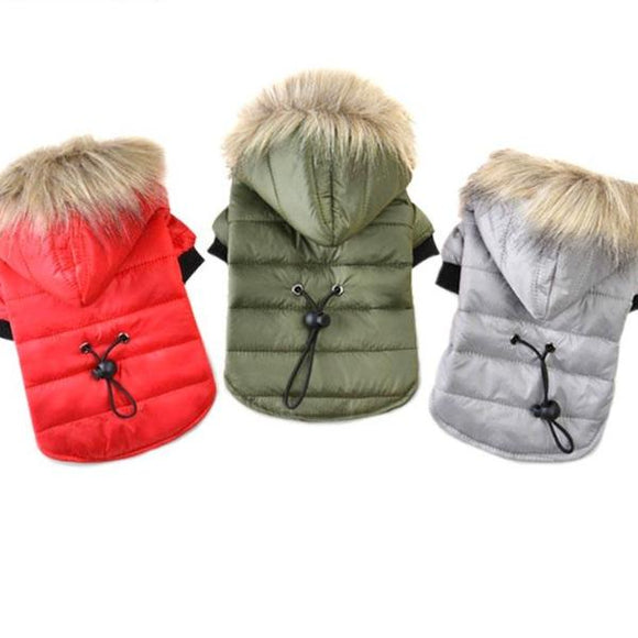 Pet Pride~Dog Coat ~ Super Warm & Snuggly For The Fashion Forward Puppy!~Scantily33x - Scantily33x