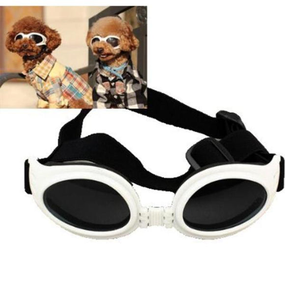 Pet Pride~Dog~ Doggles -n- Goggles! Sun Glasses! Protective Eyewear For Your Fashion Forward Puppy!!~Scantily33x - Scantily33x