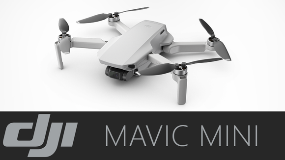 DJI Mavic Mini Fly More Combo (CP.MA.00000123.01)