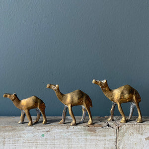 SOLD - Set of 3 Vintage Brass Camels