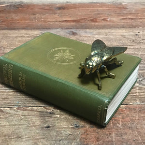 SOLD - Vintage Brass Fly Vesta Matchbox/Trinket Box/ Paperweight