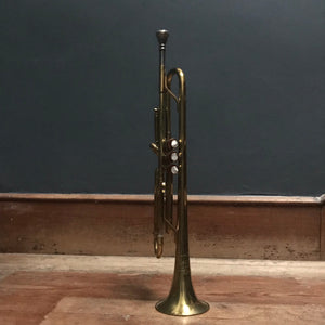 NEW - Nevada Brass Trumpet with case photo 2 | PamPicks